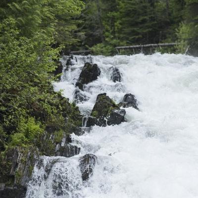 Chutes Falls Brook (Brian Atkinson)